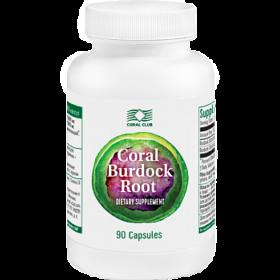 Coral Burdock Root